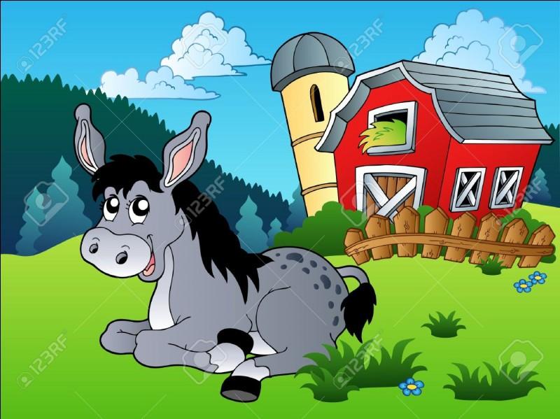 """Dans """"Mémoires d'un âne"""", vous souvenez-vous du nom de l'âne ?"""
