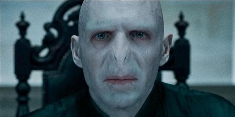 Combien d'Horcruxes a faits Voldemort ? (volontaires ou non)