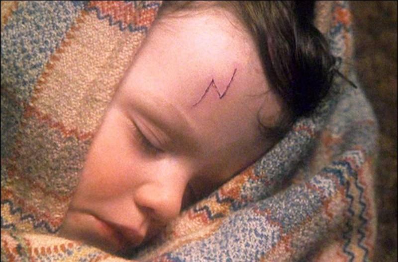 Quel sang a Harry Potter ?