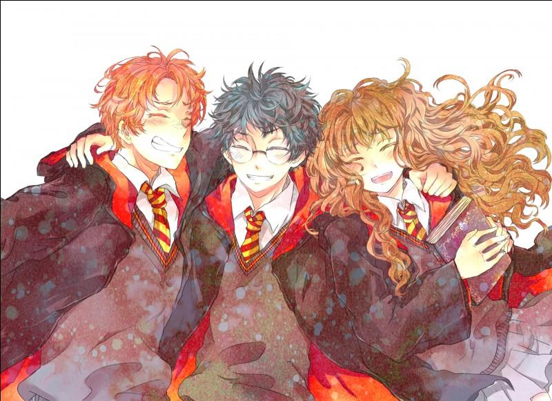 Arrivé à Poudlard, Harry rencontre ses deux meilleur(e)s ami(e)s ...