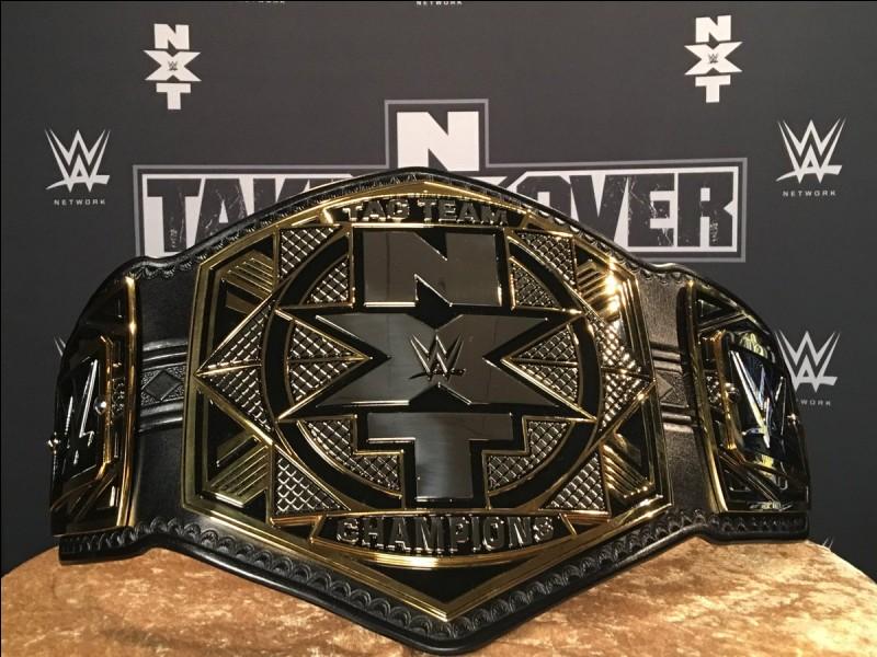 """Lors du show """"NXT Takeover Orlando"""", qui a remporté le match par équipe pour obtenir les nouveaux titres par équipe ?"""
