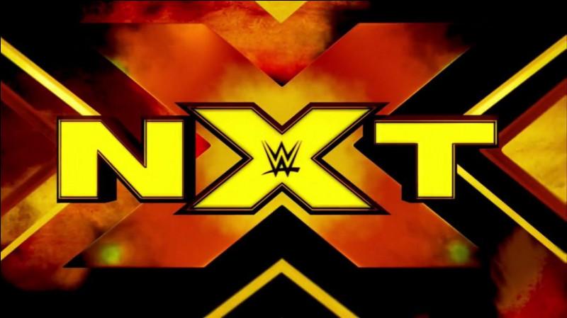 Qui gouverne NXT en tant que champion à la fin de 2019 ?
