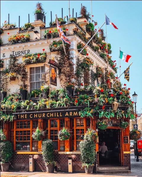 The Churchill Arms, localisé à Kensington, est un pub unique : après tout on y profite d'une tonne métrique de fleurs colorées nécessitant l'entretien d'un employé annuel. Pour Noël, on ajoute 90 arbres et 12000 ampoules. L'ambiance intérieure est alimentée pour en faire une sorte de cathédrale à la mémoire de Churchill.Dans quelle capitale, fut-il le premier pub à servir des menus Thaï ?