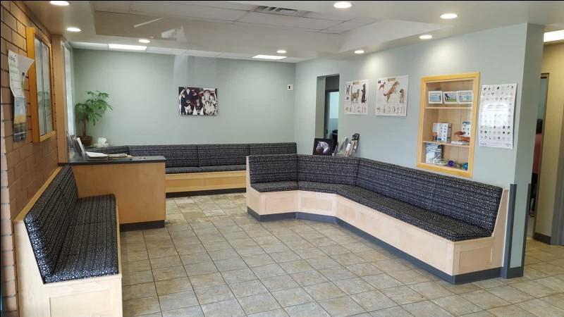 Elles vous font patienter dans la salle d'attente. Combien de fauteuil voyez-vous ?