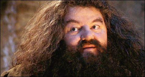 Où la baguette magique de Hagrid est-elle dissimulée ?