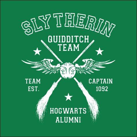 Qui joue dans l'équipe de quidditch de Serpentard ?