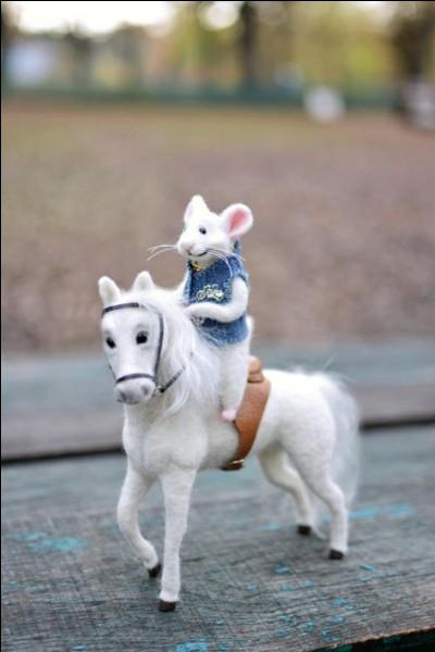Le cheval souris (grullo) existe :