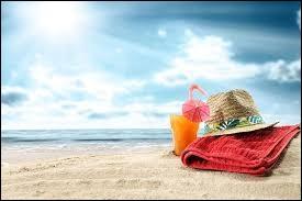 Durant quel mois passe-t-on du printemps à l'été ?