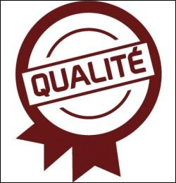 Quelle est ta plus grande qualité ?