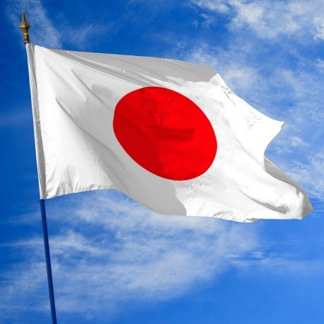 Un drapeau = Un pays !