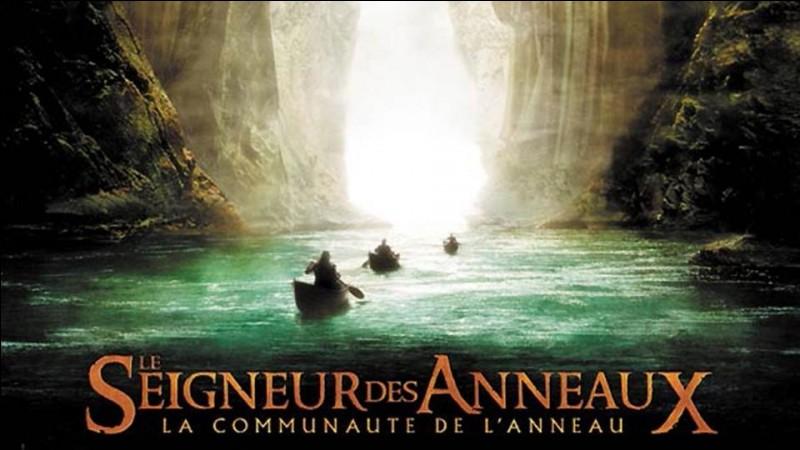 À la fin du 1er volet la Communauté se dissout, Frodon et Sam vont au Mordor détruire l'Anneau Unique, tandis que Aragorn, Legolas et Gimli vont...