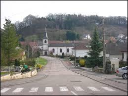 Nous terminons cette première partie en Moselle-Est, à Varsberg. Village localisé dans les régions naturelles du Warndt et du pays de Nied, il se situe dans l'ancienne région ...