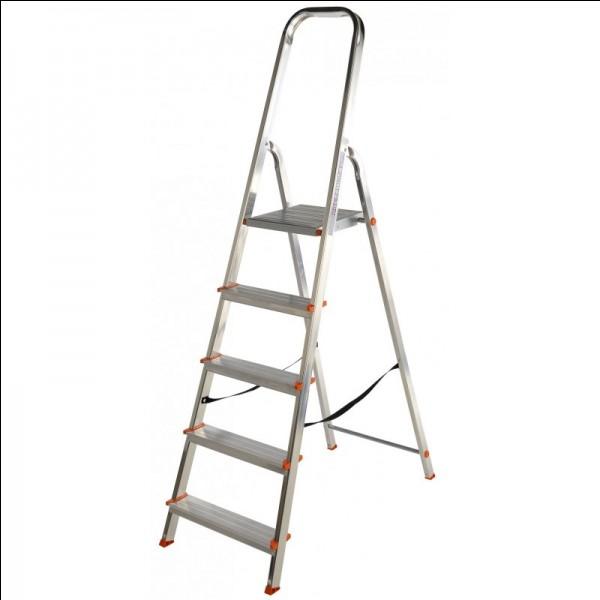 Avec cette petite échelle, il n'est pas nécessaire de prendre l'échelle à coulisse sur le toit du fourgon pour des travaux à l'intérieur des locaux. C'est...