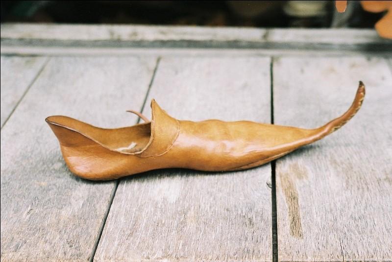 Comment appelle-t-on ces chaussures ?