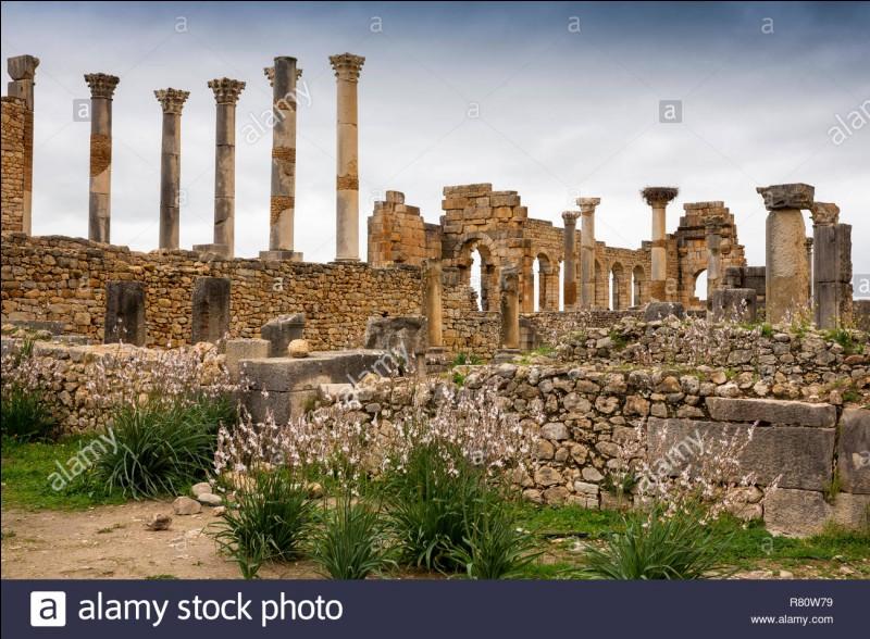 Volubilis est une cité antique située...