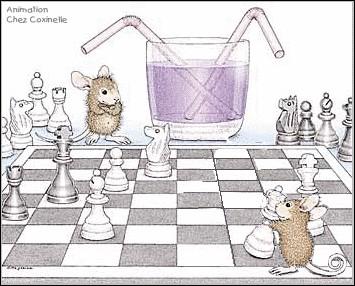 À quoi jouent nos souris ?