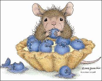 Que mange notre souris ?