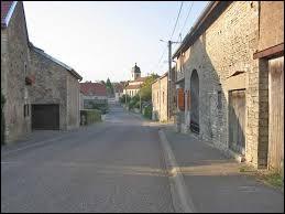 Village Haut-Saônois, Theuley se situe dans l'ancienne région ...