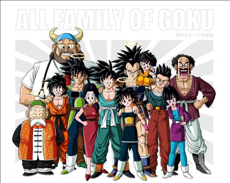 Quel est le travail de la mère de Goku ?