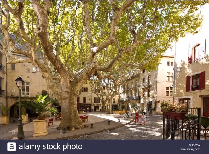 Dans quel département se situe Beaucaire ?