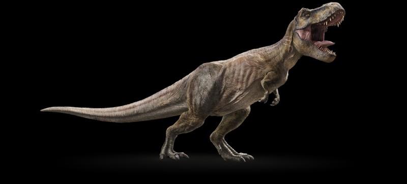 Combien de T-Rex différents ont été créés ?
