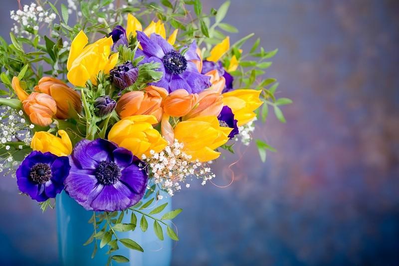 Les fleurs dans les titres de livres et de films