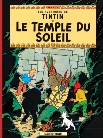Quel est le pays visité par Tintin au cours de cette aventure ?