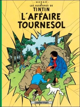 Quel est l'un des pays visité par Tintin au cours de cette aventure ?