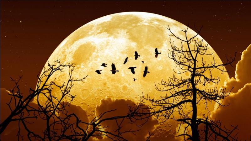 Qu'est-ce qu'une ''super Lune'' ?
