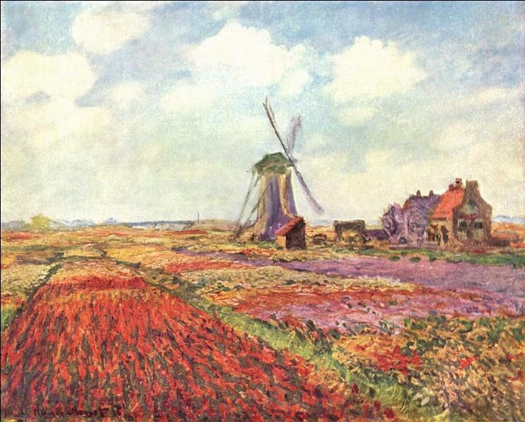 """""""Champs de tulipes en Hollande"""" présenté ici, est un tableau de Claude Monet."""