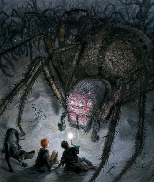Comment se nomme l'araignée d'Hagrid ?