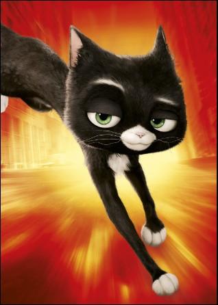 Dans quel film peut-on voir le chat Mitaine ?