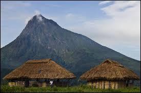 Pays : Ouganda Hauteur : 4 884 m Massif : RwenzoriPremière ascension : 1906. Louis-Amédée de SavoieQuel est ce sommet ?
