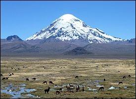 Pays : Bolivie Hauteur : 6 542 m Massif : Cordillère Occidentale Première ascension : 1939. Wilfrid Kühm et Josef PremQuel est ce sommet ?