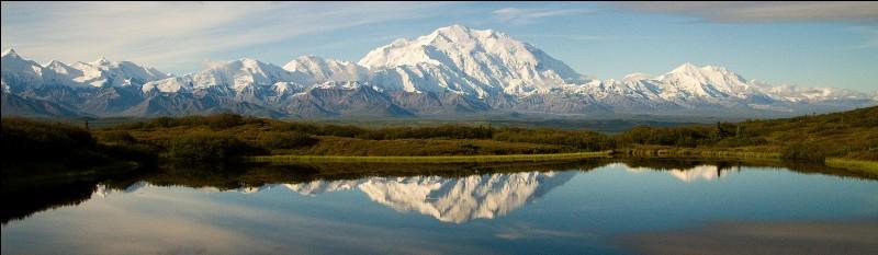 Pays : États-Unis Hauteur : 6 190 m Massif : Chaîne d'AlaskaPremière ascension : 1913. Hudson Stuck Quel est ce sommet ?