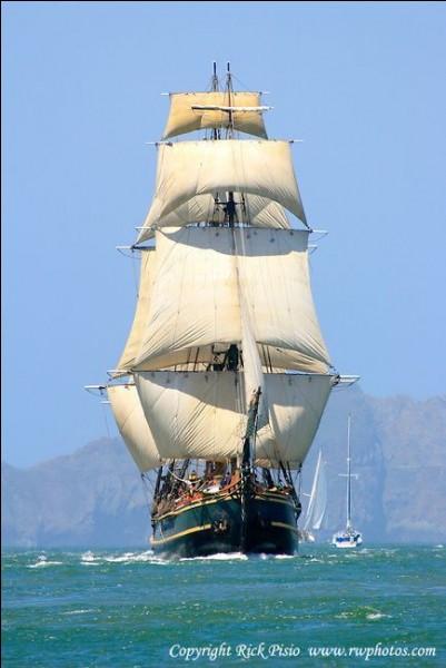 Il s'agit de la première réplique de ce navire historique : on la voit dans la baie de San Francisco : elle a été construite en 1960 pour le film avec Marlon Brando. C'était une réplique exacte mais avec 20% de plus : ce voilier coule en 2012 au large de la Caroline du Nord, pendant l'ouragan Sandy.Quel est ce navire dont une 2e réplique été faite pour le film avec Mel Gibson ?