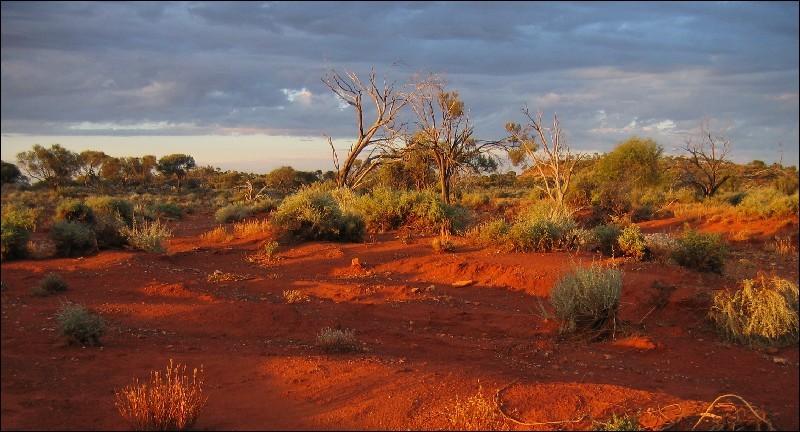 Quel nom donne-t-on à l'arrière-pays australien, constitué de savane, de forêts touffues, de bois et broussailles ?
