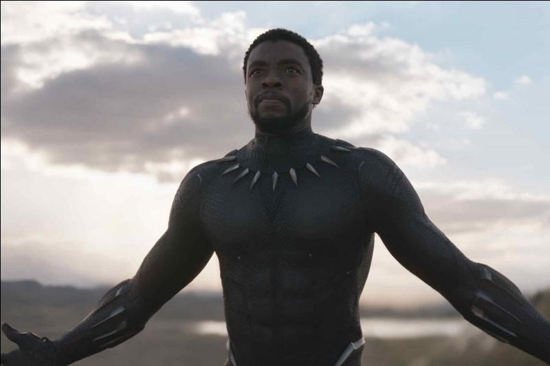 Quel est le pays de Black Panther ?