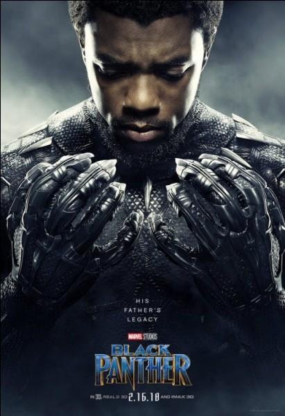 Quand se passe Black Panther ?