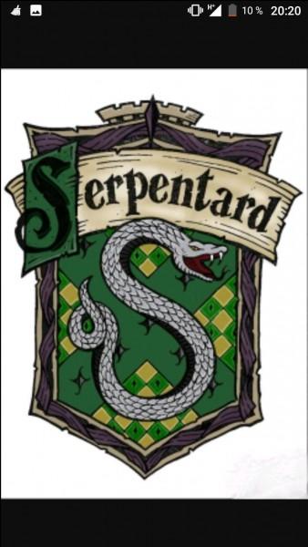 Qui est le nouvel attrapeur des Serpentards ?