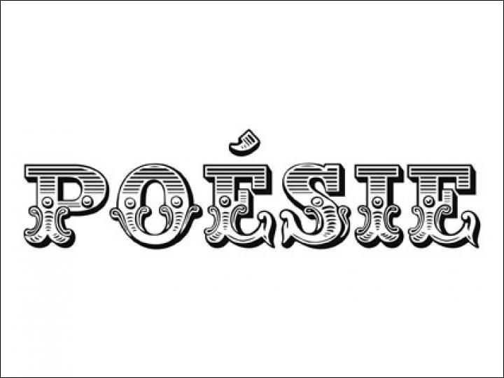 En poésie, comment appelle-t-on une strophe de cinq vers ?