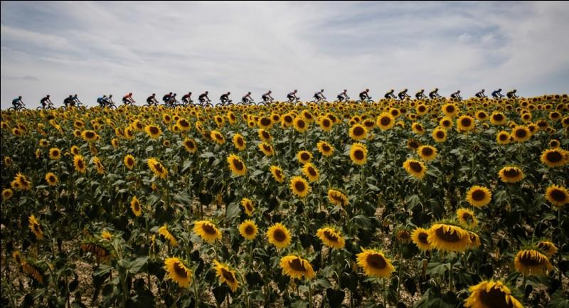 Quelle équipe remporte le sixième titre de meilleure équipe du Tour de France de son histoire ?