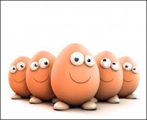 Que sont les œufs Brayon ?