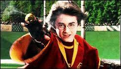 Ton poste préféré au quidditch , c'est...
