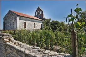 Saint-Martin-de-Bernegoue est un village de Nouvelle-Aquitaine situé dans le département ...