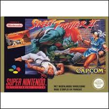 Quel personnage n'existe pas dans ''Street Fighter 2'' ?