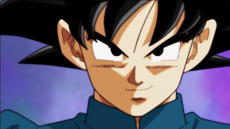 Goku s'est déjà battu avec ...
