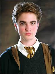 Au tournoi des trois sorciers, quel dragon Cedric Diggory a-t-il ?