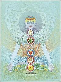 Quelle partie du corps humain n'est pas l'un des 7 chakras du yoga ?