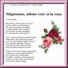 À compléter – Le rosier « Souvenir de Marcel Proust » offre de magnifiques fleurs ... parfumées.
